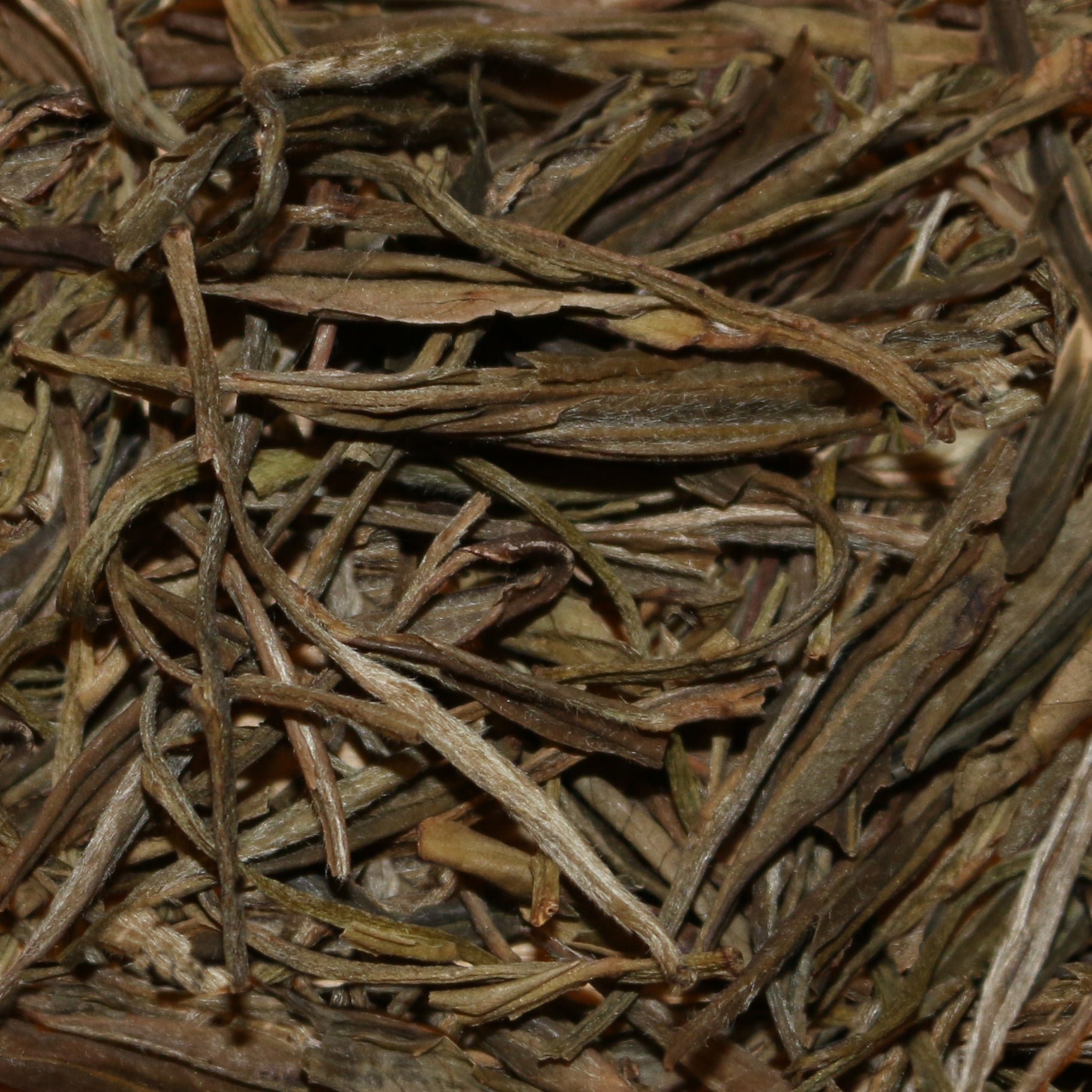 Anhui Wild-Grown China Green Tea