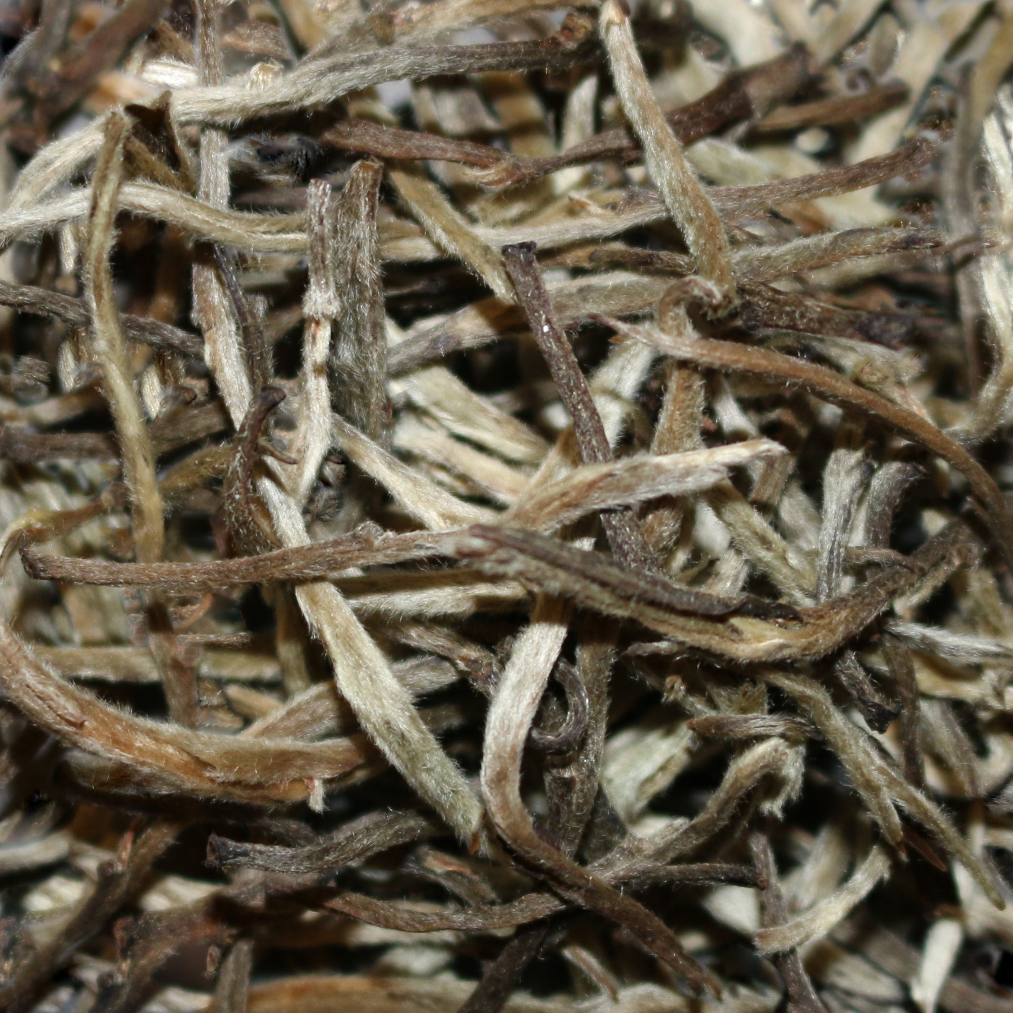 Doke Estate Silver Needle India White Tea