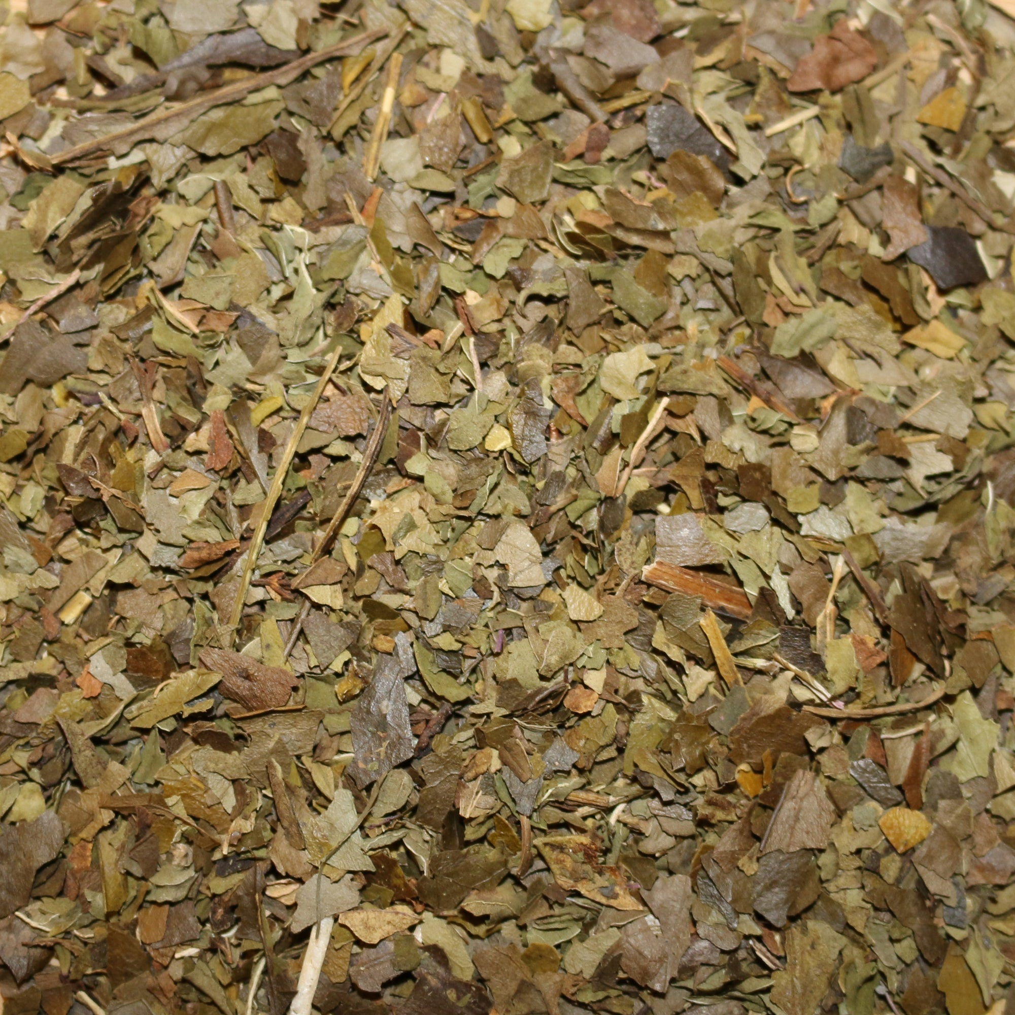 Guayusa Peppermint Organic Herbal Tisane