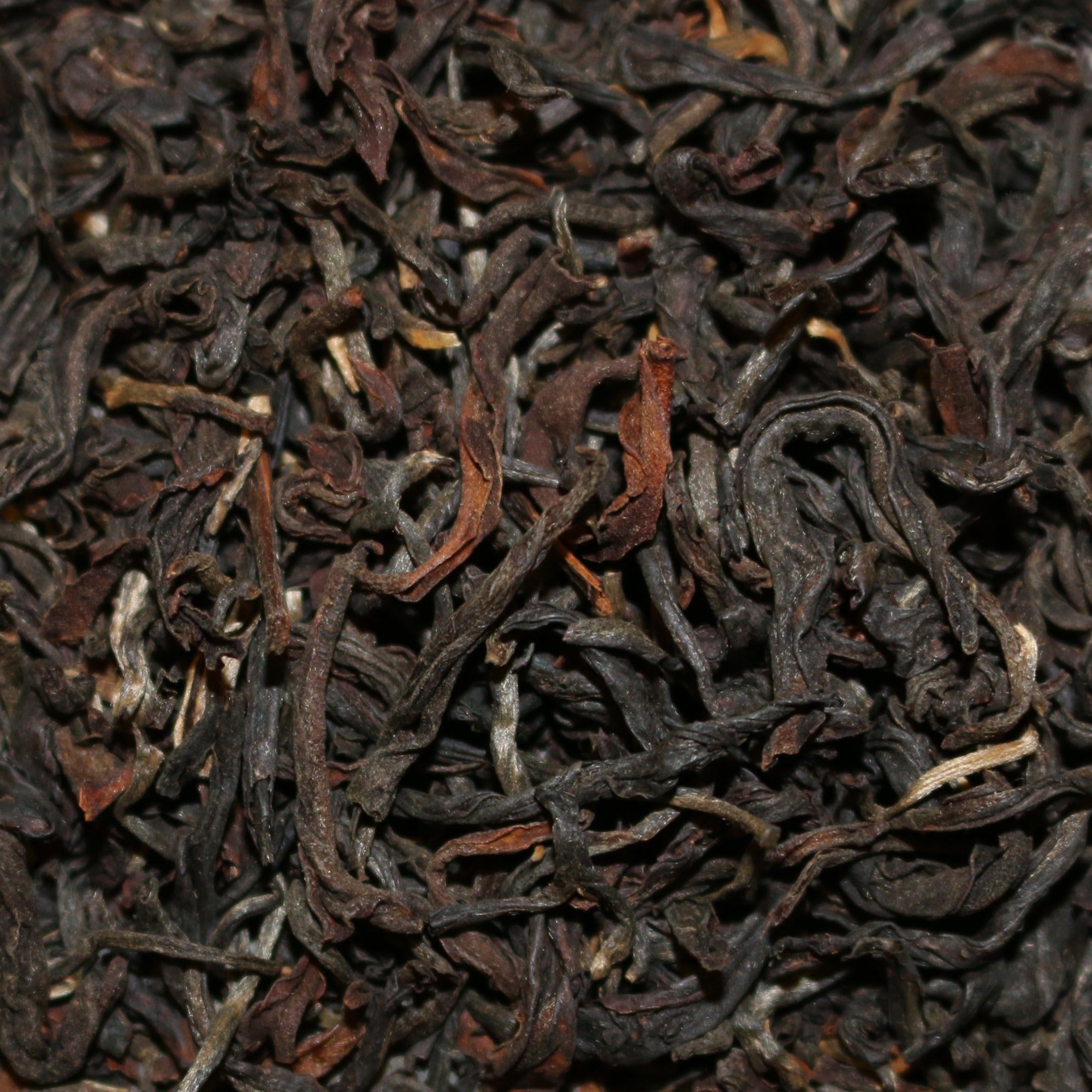 Khongea Estate Autumn Assam India Wulong Tea
