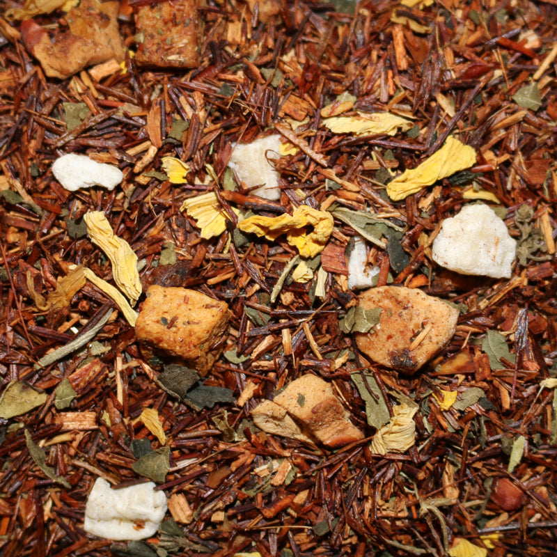 Rooibos Pumpkin Creme Herbal Tisane