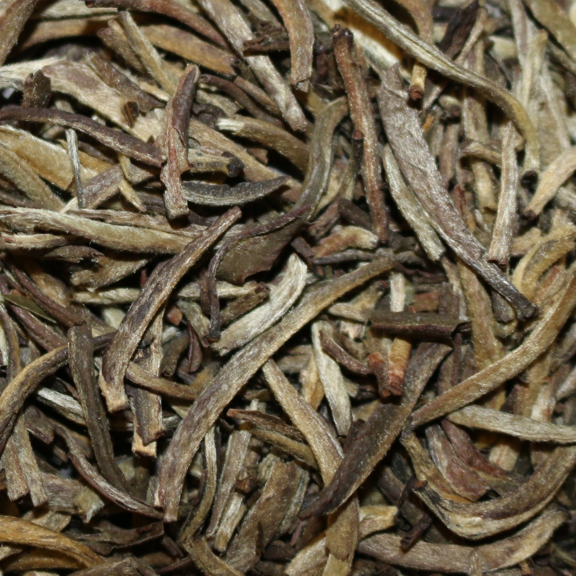 Tanzanian Silver Needle White Tea