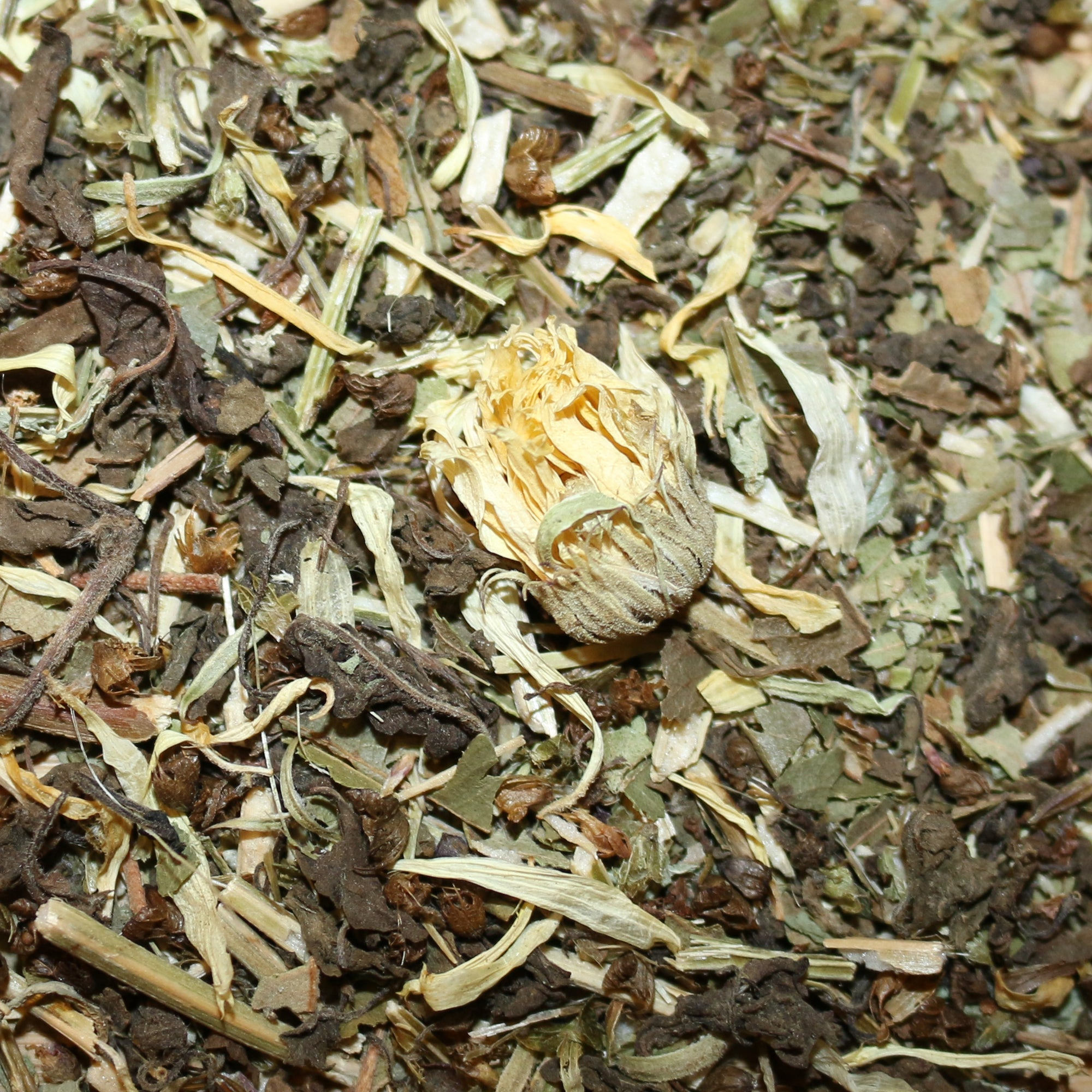 Tulsi (Holy Basil) Lemon Myrtle Marigold Organic Herbal Tisane