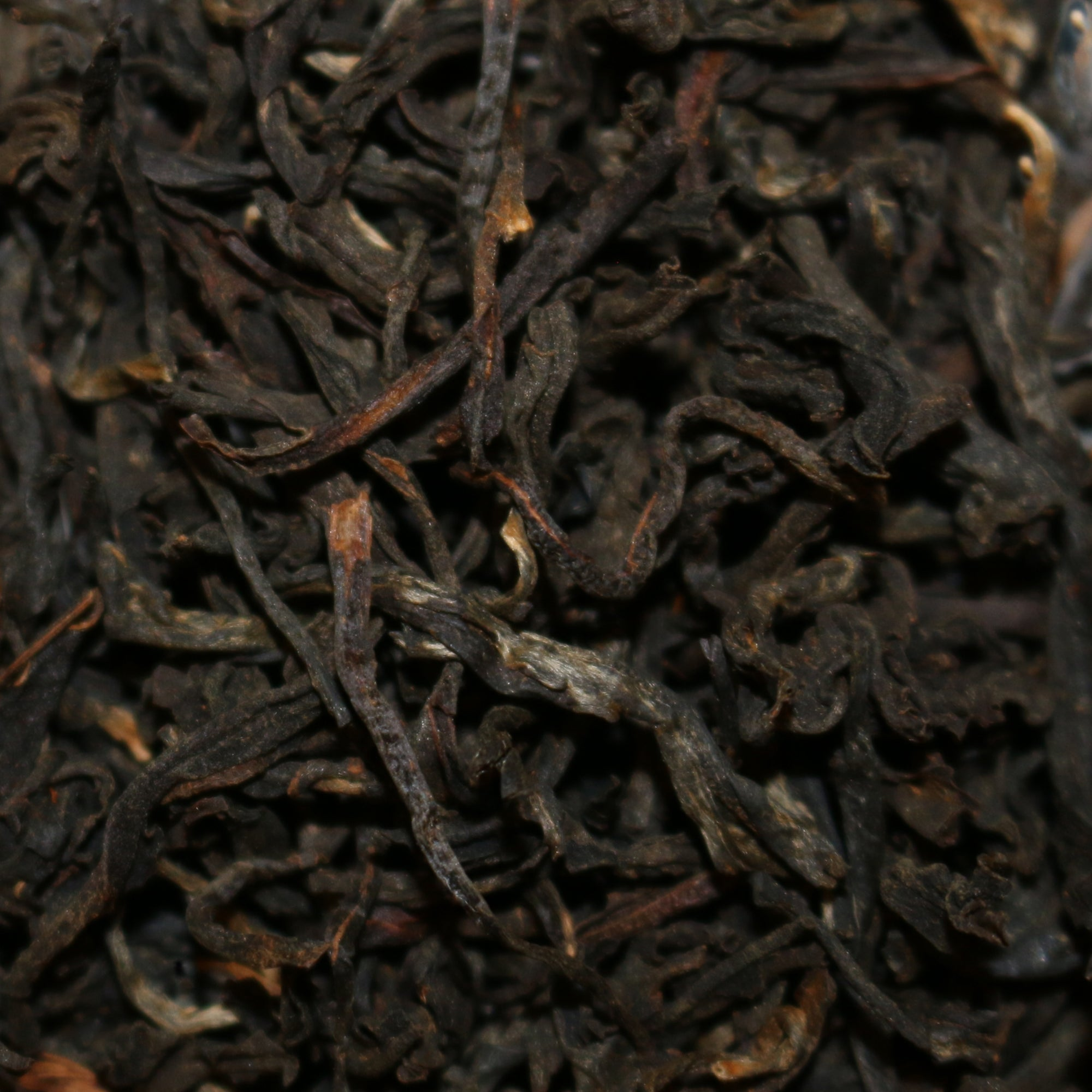 Wild Grown Ancient Tree Vietnam Black Tea
