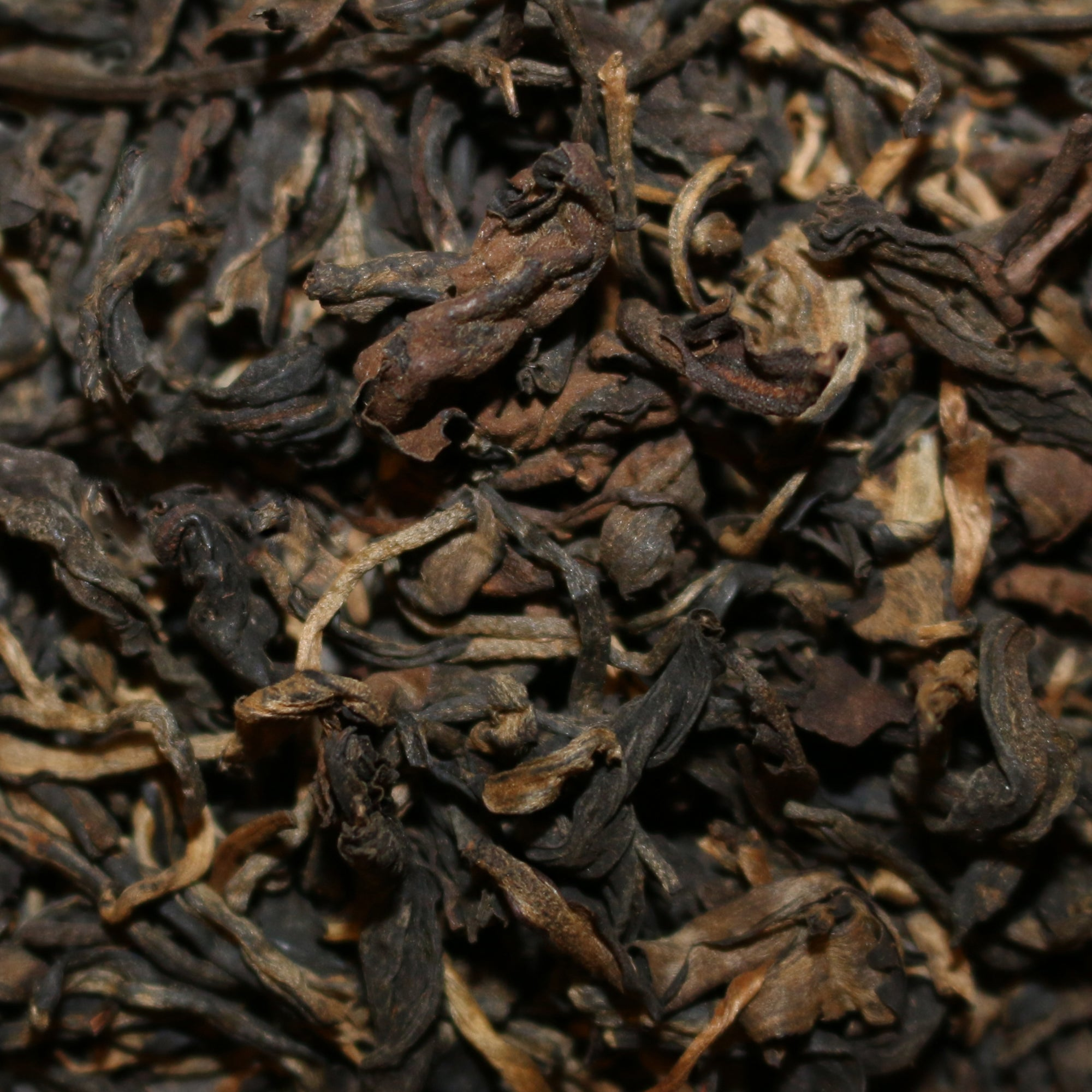 Wild-Grown Ancient Tree Vietnam Wulong Tea