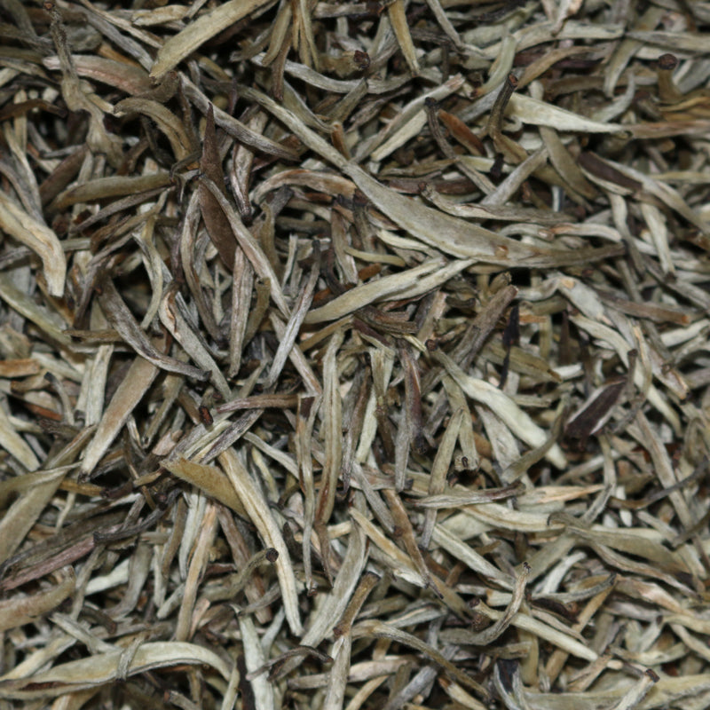 Yin Zhen (Silver Needle) China White Tea