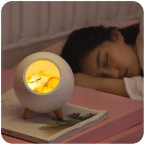 Creative Night Lamp
