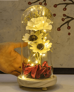 Small Night Light With Glass Cover & Dried Flowers For  Birthday Present