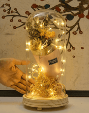 Load image into Gallery viewer, Small Night Light With Glass Cover & Dried Flowers For  Birthday Present