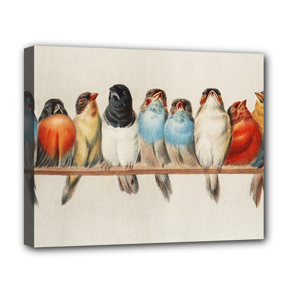Song Birds Stretched Canvas Art Print 20 by 16 Inches