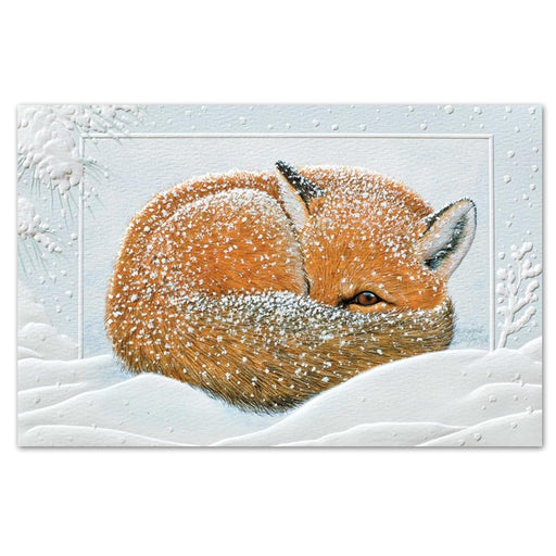 Napping Fox Embossed Christmas Cards