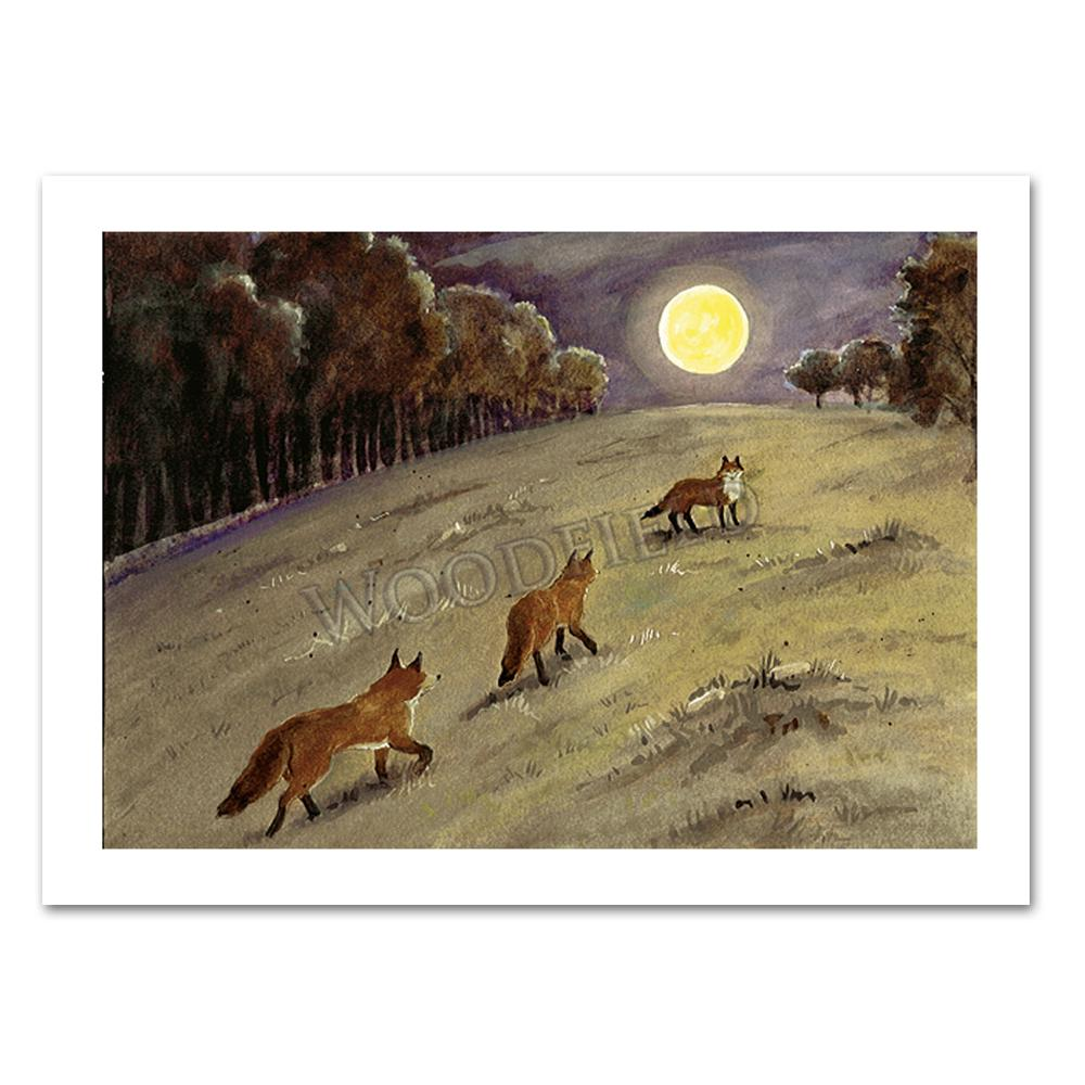 Foxes in the Moonlight Notecard by Cindy Hendrick
