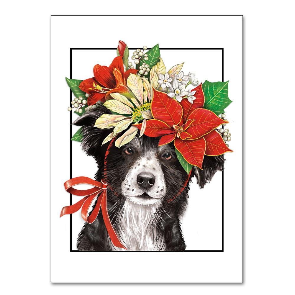 Border Collie & Poinsettia Christmas Cards