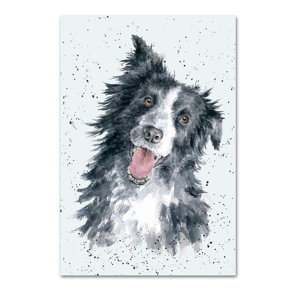 Border Collie Note Card by Wrendale
