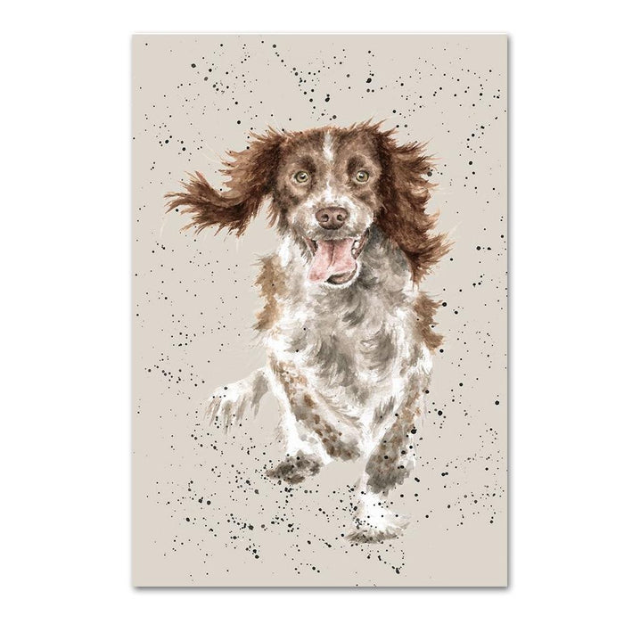 English Springer Spaniel Note Card by Wrendale