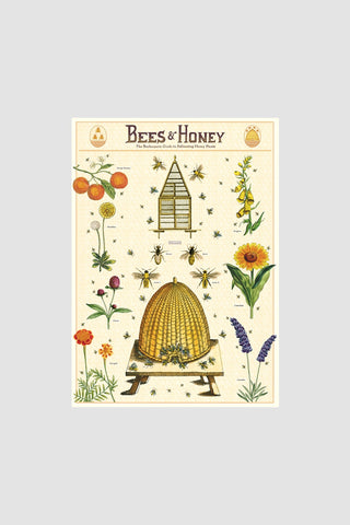 Bees & Honey Poster