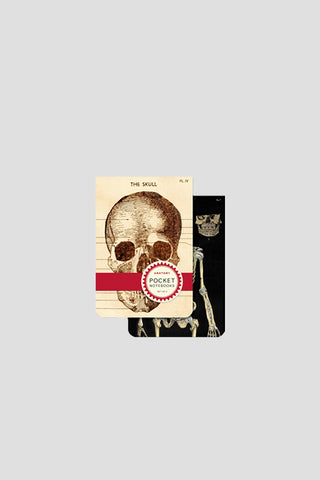 Skull Pocket-Sized Notebooks