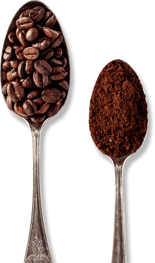 Spoon with Coffee Beans and Ground