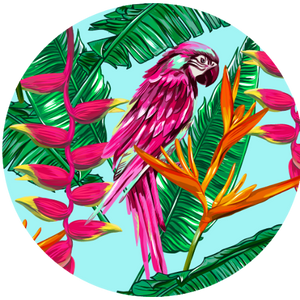 Tropical Feels - Polly in PInk