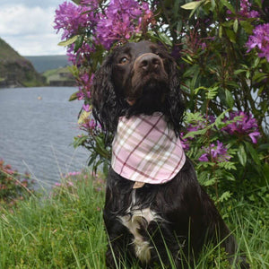 Tartan Plaid Dog Bandana Pink