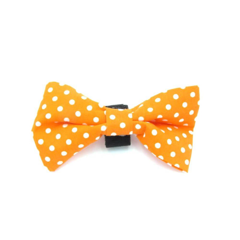 Polka Dot Dog Bow Tie Orange