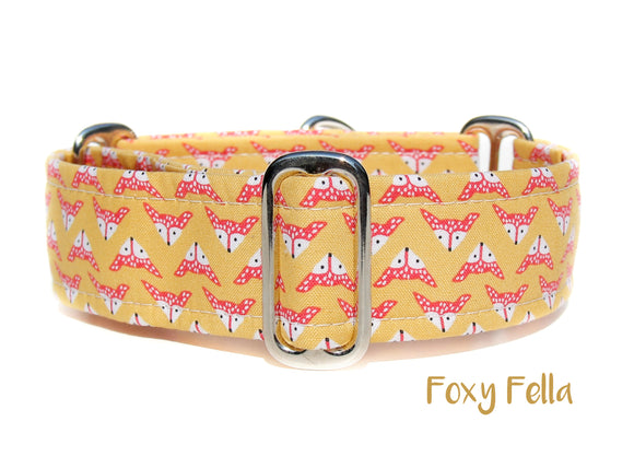 Yellow Fox Martingale Dog Collar, 1.5