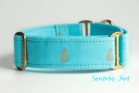 Blue Gold Pineapple Martingale Dog Collar, 1.5