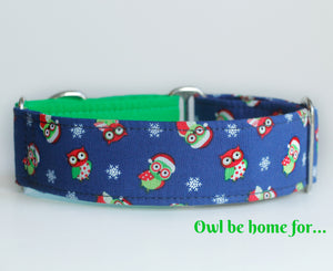 "Cute Owls Two Tone Martingale Dog Collar - Ship Ready, 1.5"" Wide, Size Large 13-17"""