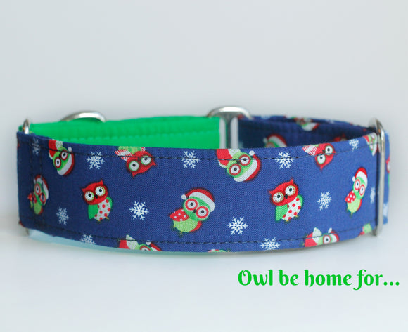 Cute Owls Two Tone Martingale Dog Collar - Ship Ready, 1.5