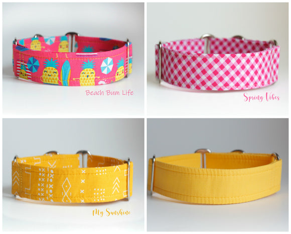 1.5 Inch Martingale Collars Ready to Ship - Your Choice!