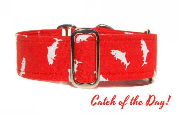Red Fish / Shark Martingale Dog Collar, 1.5