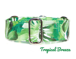 "Tropical Green Martingale Dog Collar, 1.5"" Wide Ready to Ship, Size Large 13-17"""