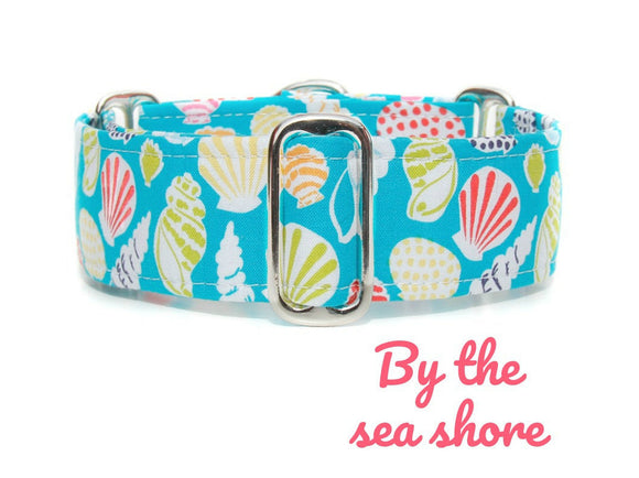 Teal Beach Martingale Dog Collar, 1.5