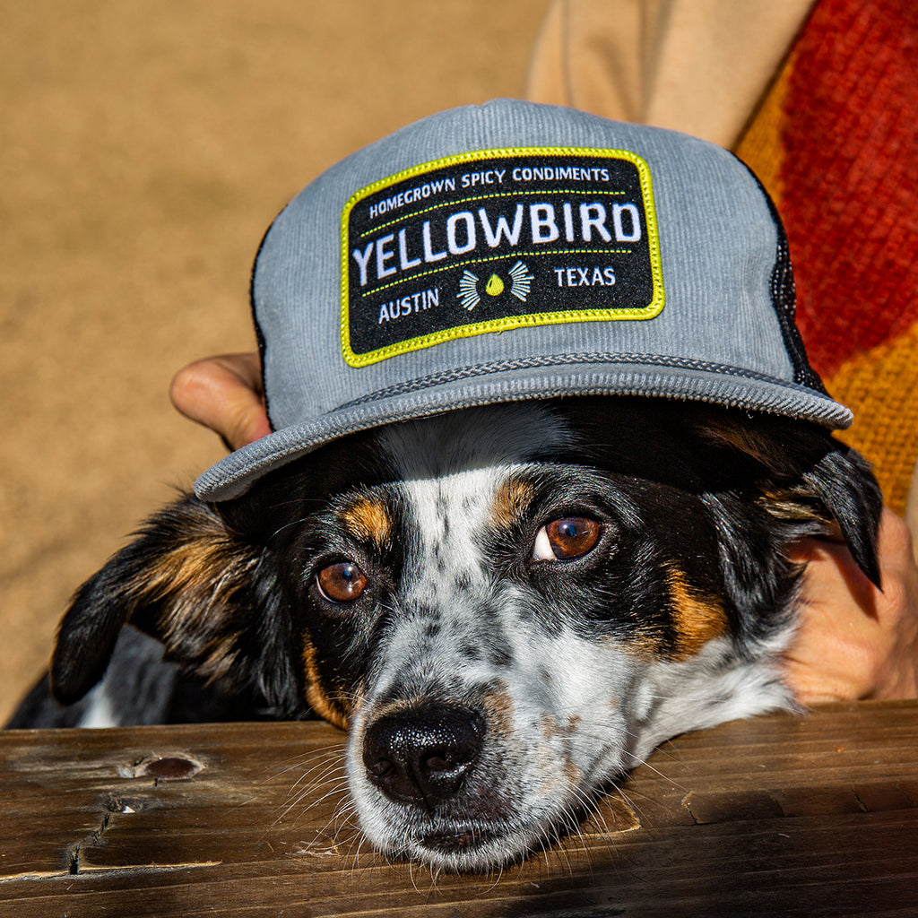 The Yellowbird IBA Hat