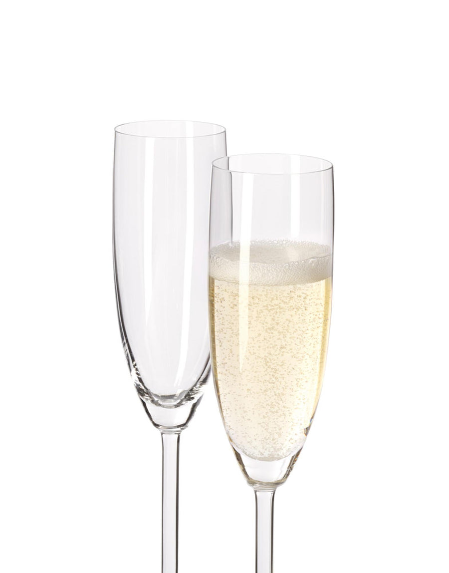 Leonardo Champagne Glass 215ml Daily