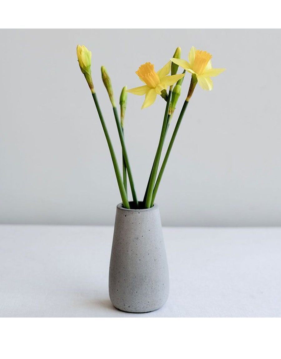 Wild and Wood Small Concrete Vase