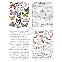 Load image into Gallery viewer, ReDesign Transfer - Parisian Butterflies
