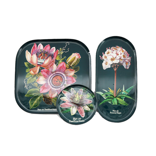 S/3 Botanical Trays (B)