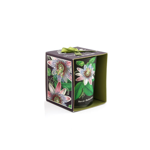 Botanical Scented Candle Passiflora Edulis