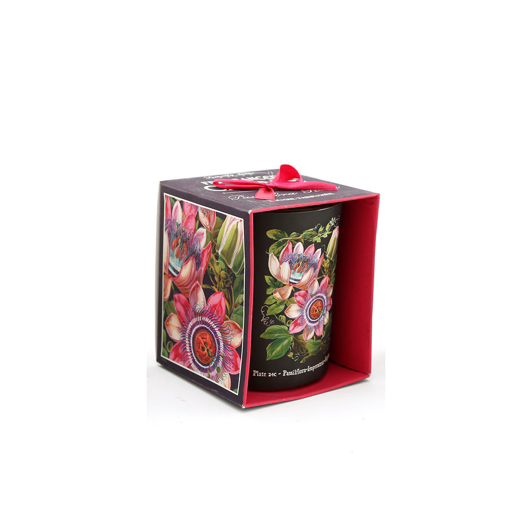 Botanical Scented Candle Passiflora Imperatrice Eugenie