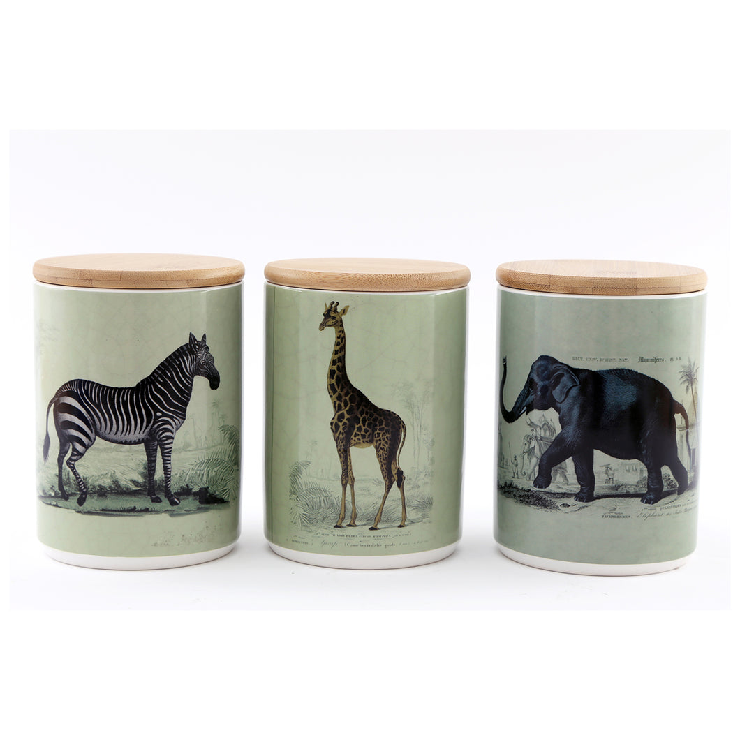 Set of 3 Safari Canisters