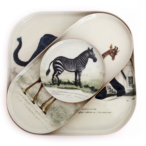S/3 Animal Trays