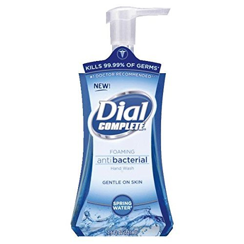 Dial Foaming Liquid Hand Soap - 1 Each