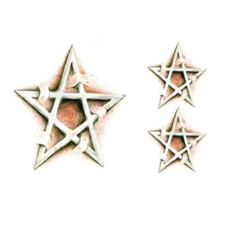 Set of 2 Cool Stylish Star Totem Tattoo Body Tattoo Stickers Temporary Tattoos