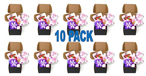 10 Pack Spa Essentials Gift Set Assorted Glam Box Kit for Women and Girls Assorted Glam Box Kit Perfect for Slumber Parties and Self Care Nights Wholesale Bulk Lot