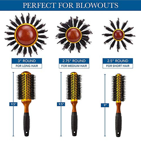 Small Round Blow Dry Brush - Boar Bristle, Thermal Ceramic Barrel, Professional Anti-Static Roller Hair Brush for Styling and Blow Drying - 12 Row, For Short to Medium Hair - By Cantor