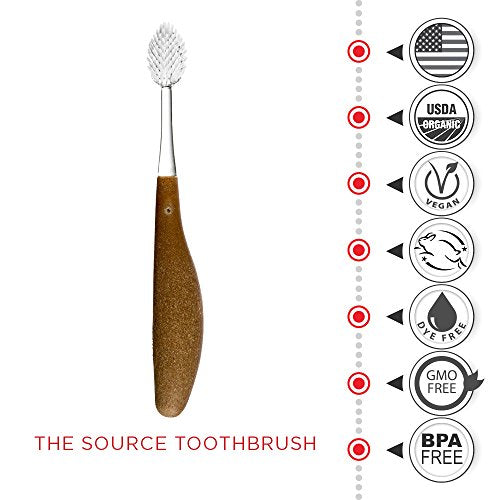 Radius Toothbrush Source Medium Brush   3 Pack In Assorted Colors, Bpa Free And Ada Accepted, Design