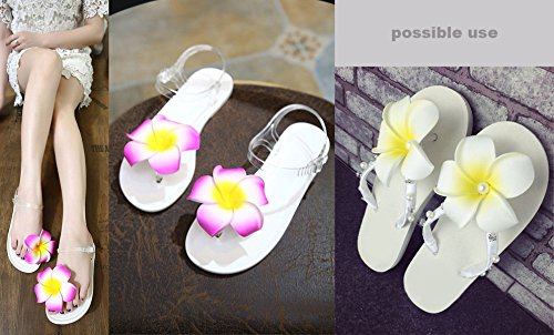 "HipGirl 6pc 2.5"" Hawaii Hawaiian Plumeria Flower Foam Hair Clip Vacation Accessory, Boutique Alligator Clip. For Moana Party Supplies, Match Beach Dress, Hawaiian Shirt and Hawaiian Dresses for Women"