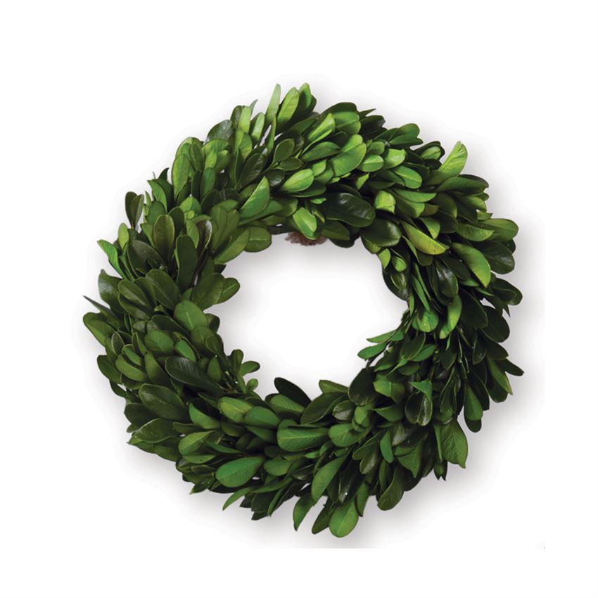 Preserved Boxwood Wreath 6 inch