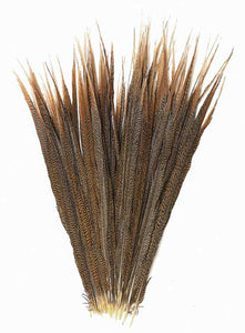 Pheasant Feathers, Golden